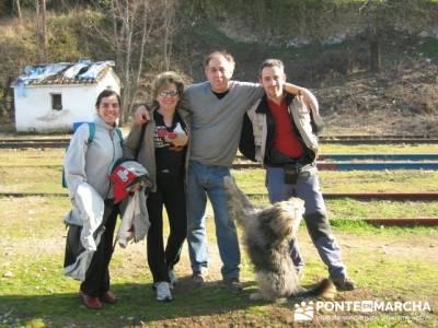 Senderismo con perros; senderismo en la comunidad de madrid